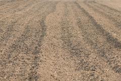Сапропель (ил) - Ил, внесенный в почву