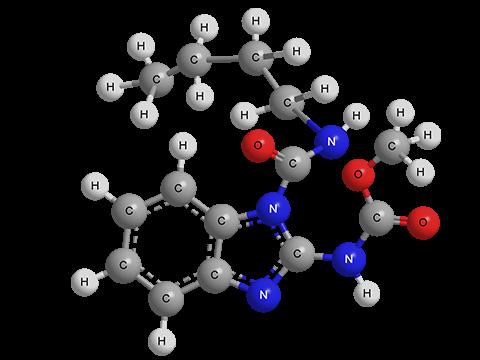 Беномил (Фундазол)
