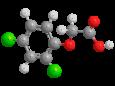 2,4-Д (2,4-Дихлорфеноксиуксусная кислота) - Трехмерная модель молекулы