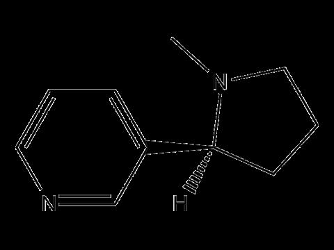 Никотин - Структурная формула