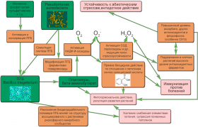Поли-бета-гидроксимасляная кислота - Спектр действия препарата Альбит