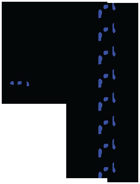 Изомеры циперметрина - Изомеры циперметрина