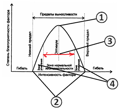Неинфекционная болезнь - Закон минимума, оптимума и <br />максимума действия факторов жизни.