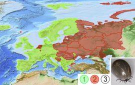 Эндемичный район - Пример энденемичного района