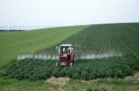 Пестицид - Использование пестицида