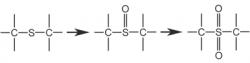 Метаболизм - Превращение сульфооксида в сульфон