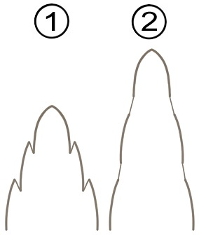 Мембранное соединение склеротов - Кольцевые сегменты