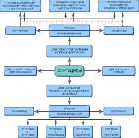 Фунгицид - Классификация фунгицидов