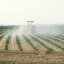 Аэрозольная обработка - Обработка растений аэрозолем-туманом