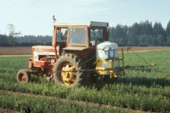 Системный пестицид - Обработка поля системными гербицидами </p>для уничтожения сорняков