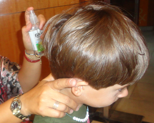 Семейство Педикулиды - Профилактическая обработка головы </p>против вшей