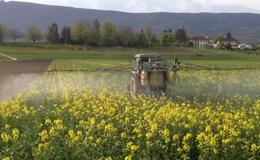 Пестицид - Опрыскивание пестицидами