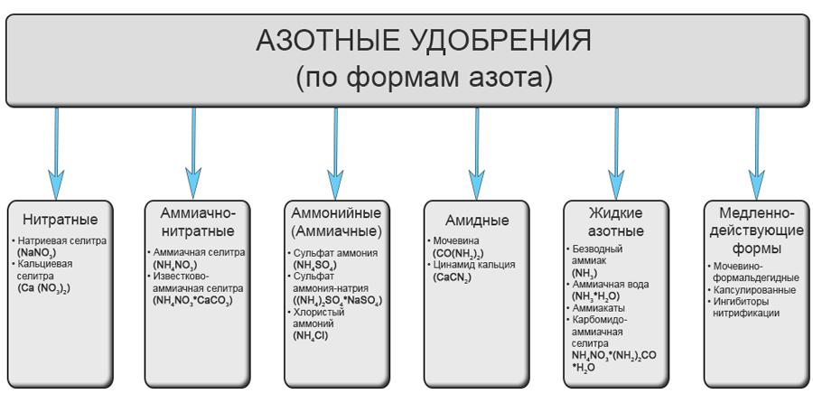 Азотные удобрения - Азотные удобрения (по формам азота)