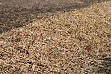 Органические удобрения - Cолома