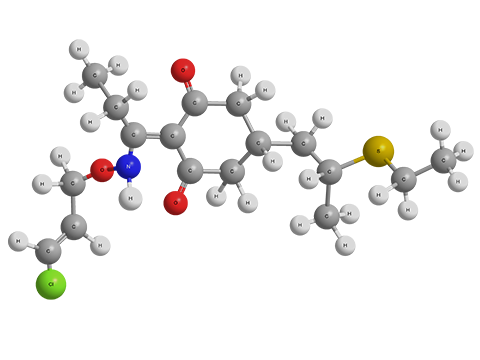 Циклогександионы - Клетодим