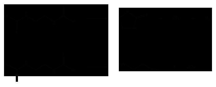 Дитиокарбаматы - Гидролиз солей дитиокарбаминовой кислоты