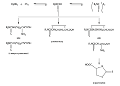 Дитиокарбаматы - Схема превращения диалкилдитиокарбаматов</p> в объектах окружающей среды