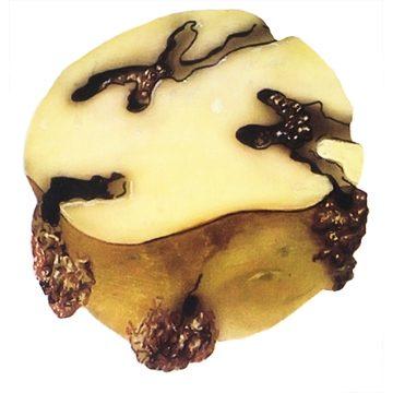 Моль картофельная - Поврежденный клубень картофеля. Использовано изображение:[13]