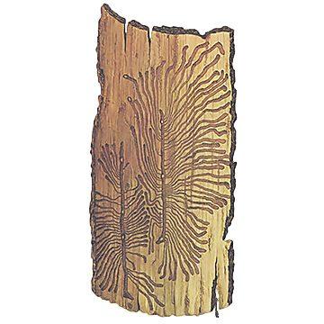 Лубоед сосновый большой - Повреждение ствола. Использовано изображение:
