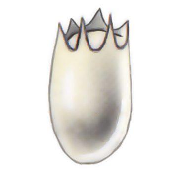 Жук капровый - Яйцо. Использовано изображение:[16]