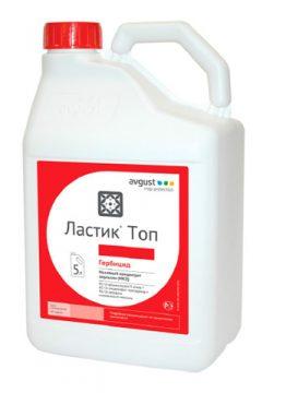 Ластик Топ