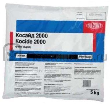 Косайд 2000