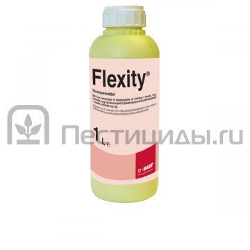 Флексити