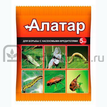 Алатар - Ампула 5 мл. Использовано изображение:
