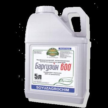 Баргузин 600 - Канистра 5 л. Использовано изображение: