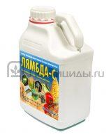 Лямбда-С