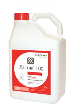 Ластик 100