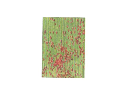 Ржавчина бурая листовая пшеницы - Деталь листа с уредопустулами