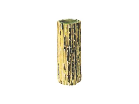 Ржавчина стеблевая (линейная) зерновых - Деталь стебля пшеницы с телейтопустулами