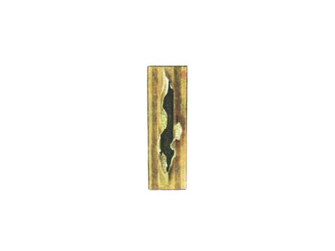 Ржавчина стеблевая (линейная) зерновых - Телейтопустула