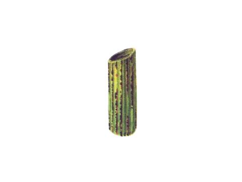 Ржавчина желтая зерновых культур - Уредопустулы и телейтопустулы, чередующиеся в рядах на влагалище листа
