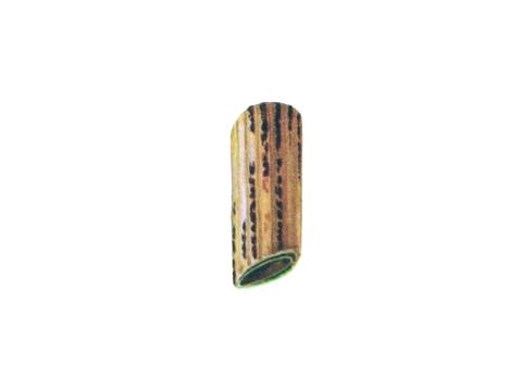 Ржавчина желтая зерновых культур - Более зрелый стебель с телейтопустулами