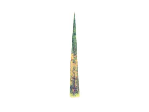 Ржавчина желтая зерновых культур - Признаки на листе сеянца.