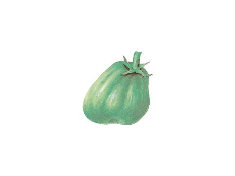 Столбур томата - Плоды деформируются